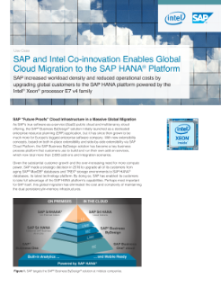 Global Cloud Migration for SAP Business ByDesign*